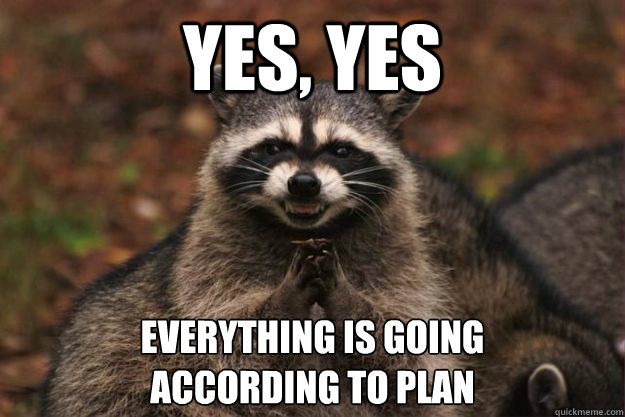 "Evil Plotting Raccoon meme with caption: ""Yes, yes. Everything is going according to plan."""